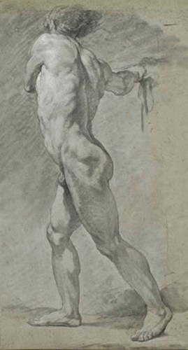 A Standing Male Nude